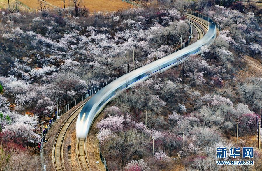 长城附近 那趟开往春天的列车来了!