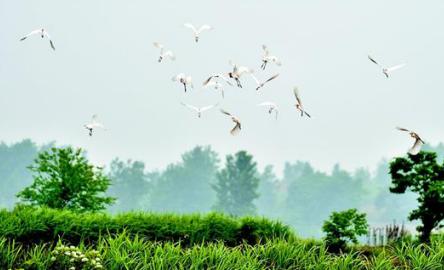 鄂西明珠耀荆楚 ——湖北南漳推动全域旅游发展观察