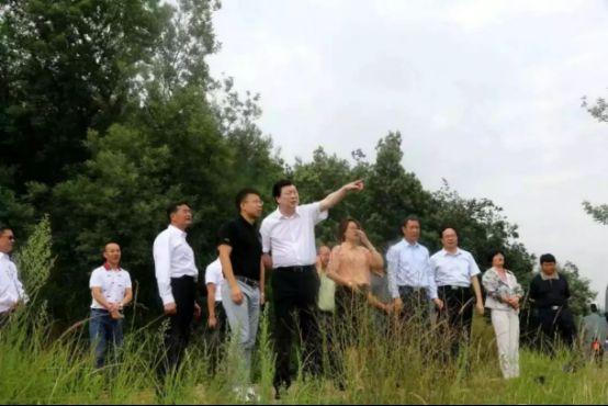 打造云南文化旅游新地标,伟光汇通考察曲靖爨文化项目