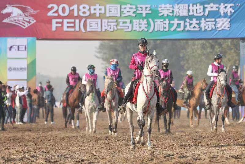 2018中国安平国际马联(FEI)耐力达标赛开赛 促文体旅游业产业升级