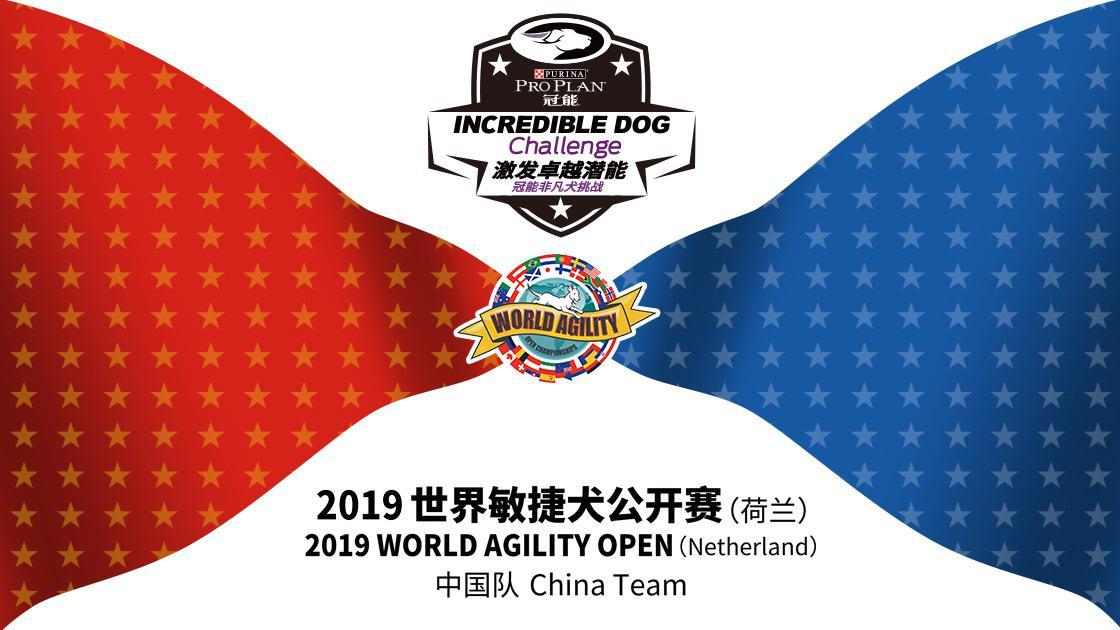 世界敏捷犬公开赛落下帷幕,冠能助力中国代表队刷新历史记录