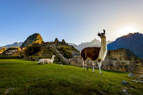 横跨美洲大陆的泛美公路——秘鲁的心脏腹地